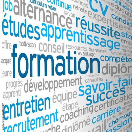 """Nuage de Tags """"FORMATION"""" (études cv continue professionnelle)"""