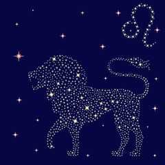 Zodiac sign Leo on the starry sky