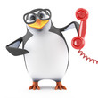 Academic penguin answers the phone