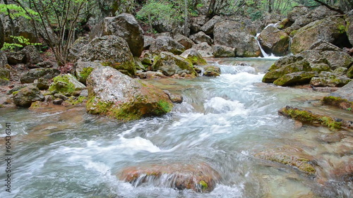 Mountain River. Spring melt-water flowing in a mountain forest