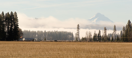 Mount Hood Washington Side Ranch Land Farm Grasslands