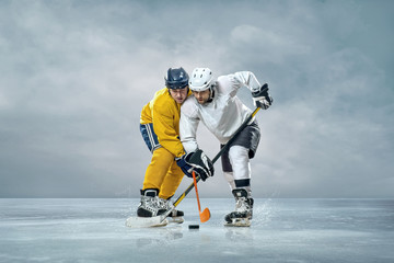 Ice hockey players on the ice