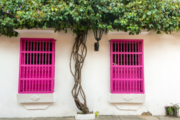 Pink and White Colonial Architecture
