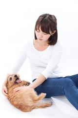 犬を撫でる女の子