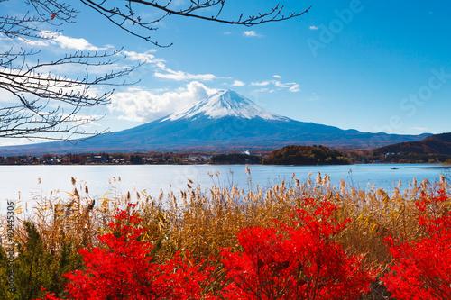 Mt. Fuji in autumn - 60445306