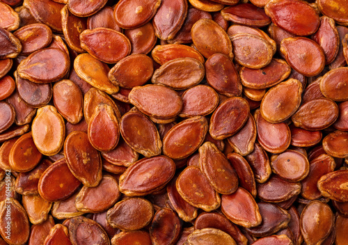 Dried red melon seed