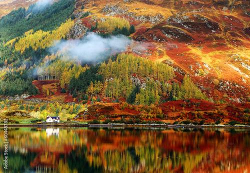 Leinwanddruck Bild Autumn colours in Highlands, Scotland, Europe