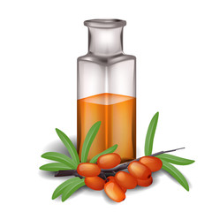 Sea buckthorn branch with berries and bottle of oil