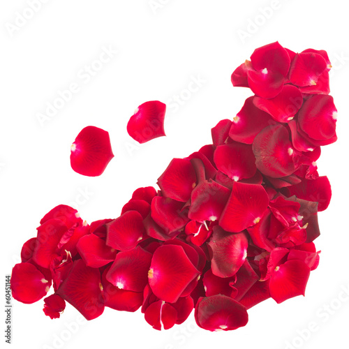 pile  of  crimson rose petals