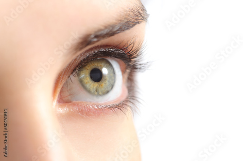 Close up of a beautiful woman green eye