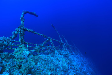 Shipwreck of the Numidia in the red sea