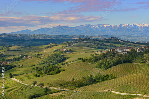 Green hills and vineyards of Piedmont, Italy.