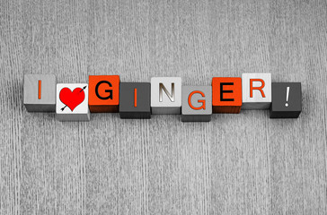 I Love Ginger, sign series for spices, recipes, healthy eating.