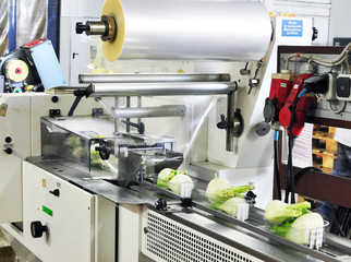 Packaging machine food industry