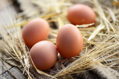 Eier, Stroh - 60458702
