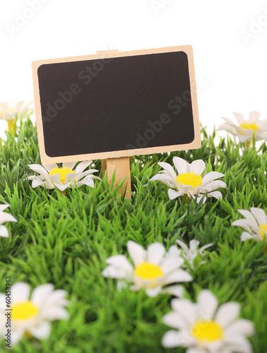 Frühlingswiese mit Schild