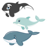Dolphin, Whale and Killer Whale