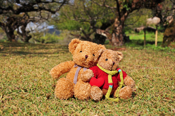 Two teddy bears sitting in the garden with love.