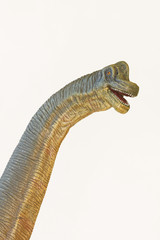 A Tall Brachiosaurus Dinosaur, or Arm Lizard