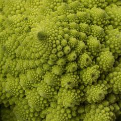 Broccolo romanesco
