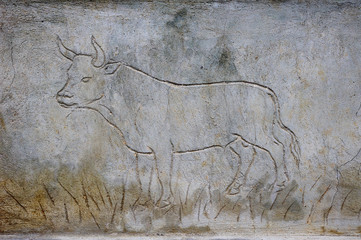 Engraved bull on fresh plaster