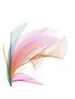 canvas print picture - fiore astratto