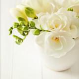 Fototapeta flowers in a vase