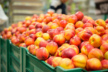 Bunch of nectarines on boxes in supermarket