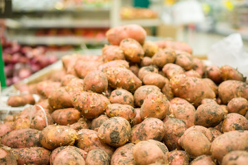 Bunch of new harvest potatoes in supermarket