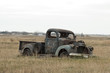 Old Rusty Truck in a pasture - 60480111