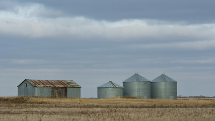 Grain Bins in a farm field