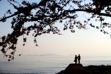 Nice sakura place