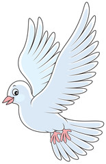 White pigeon flying