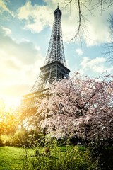 Springtime in Paris. Eiffel tower