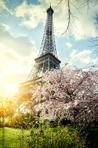 Wall mural Springtime in Paris. Eiffel tower