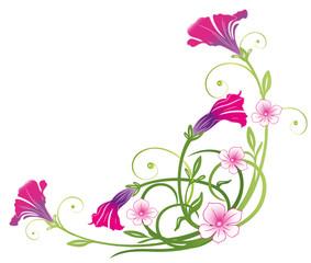 Petunien, Balkon, Sommer, Blumen