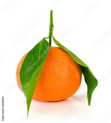 mandarin with green leaves