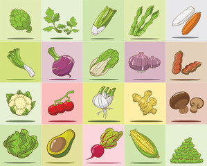 Vegetables in vector set
