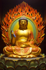 Buddha with mobile