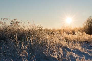Зима в Великолукском районе