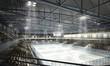 Leinwanddruck Bild - Eishockeyhalle