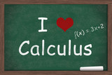 I love Calculus poster