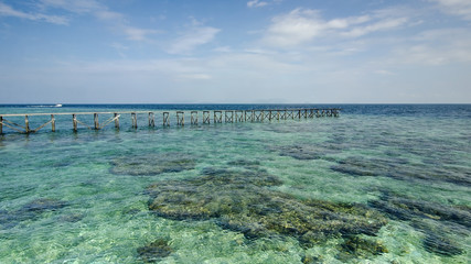 view of old broken jetty during sunny day with coral and green s