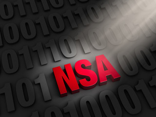 Shinning a Light NSA Cyber Spying