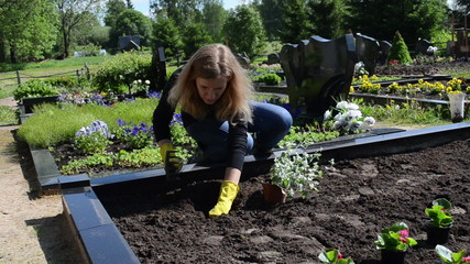 girl daughter sit plants and flowers on father grave in cemetery