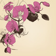 Orchid corner decoration, greeting card vector