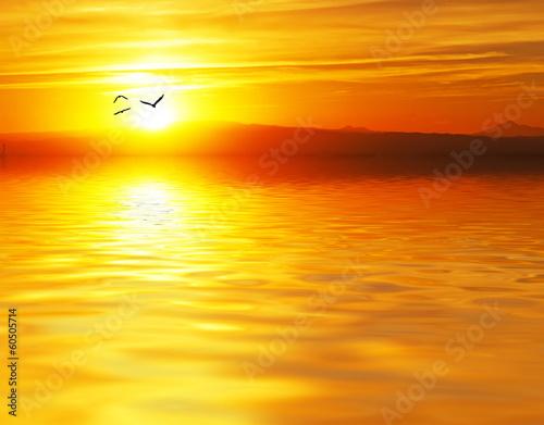 In de dag Oranje eclat el sol se esconde tras el mar