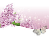 greeting card with lilac and butterfly