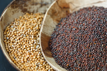 Brown and yellow mustard seeds