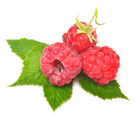 Rasberry with leaves